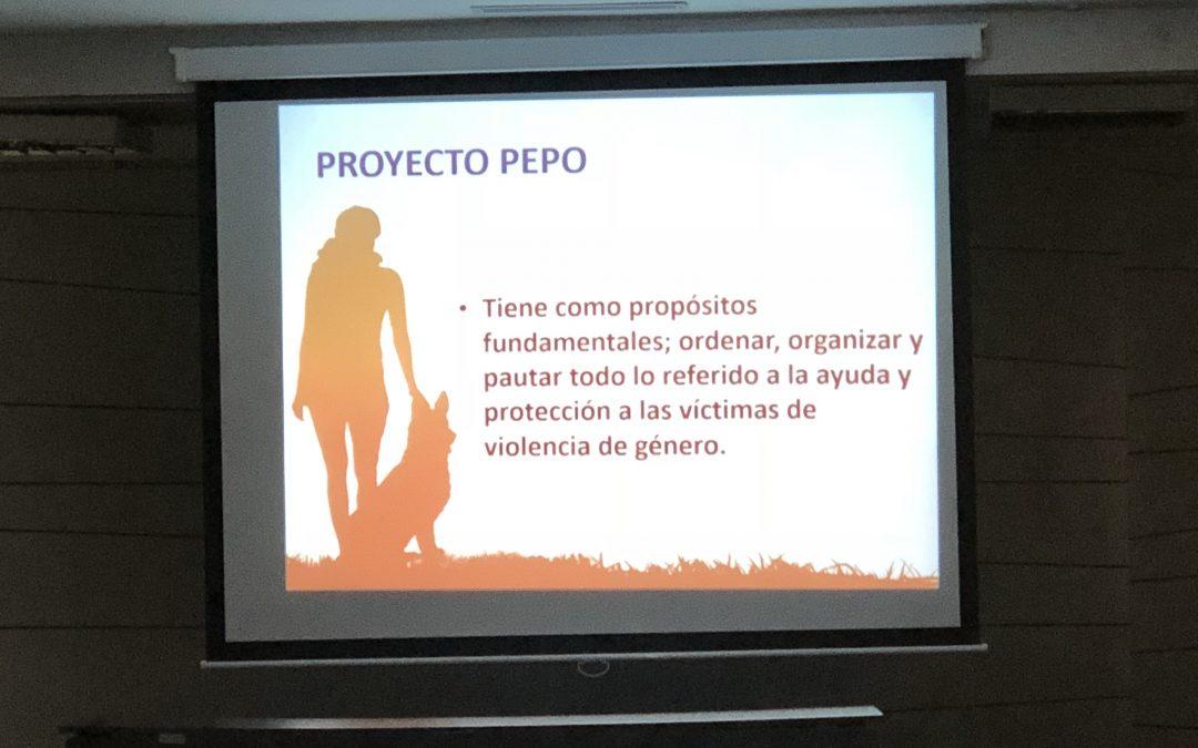 """Interesantisima ponencia de una víctima de genero sobre el proyecto """"Pepo"""""""