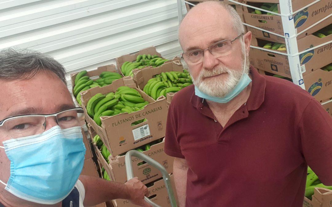 Nueva entrega de 400 kg de plátanos a la Despensa Municipal de Arona