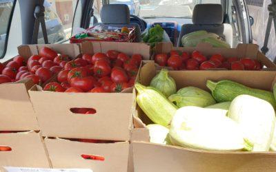 Rotary Club dona una cantidad importante de tomates y bubangos a la asociación Arca de Noé de Adeje, Tenerife